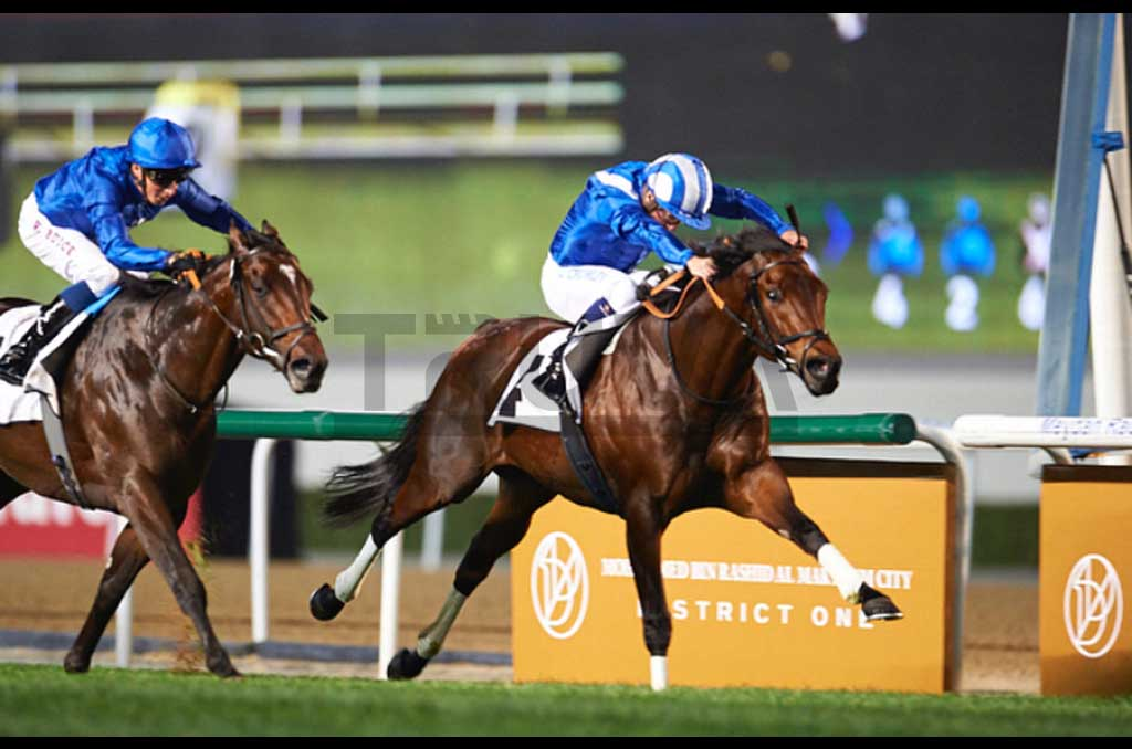 23. Dubai World Cup